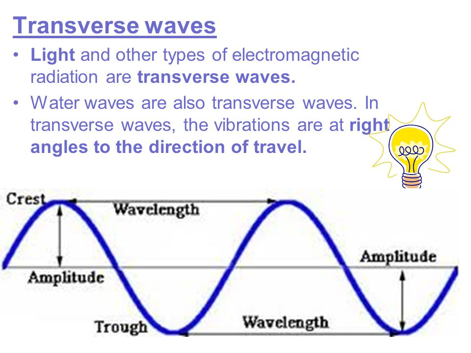 Transverse waves Light and other types of electromagnetic radiation are transverse waves.