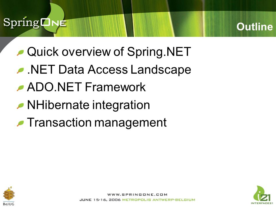 Quick overview of Spring.NET .NET Data Access Landscape
