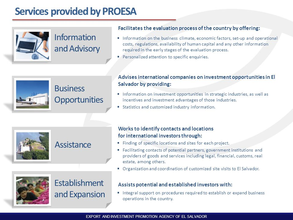 Services provided by PROESA