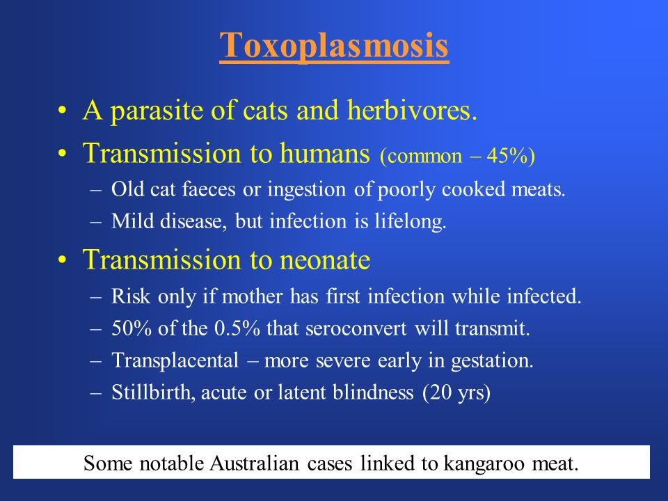 Some notable Australian cases linked to kangaroo meat.