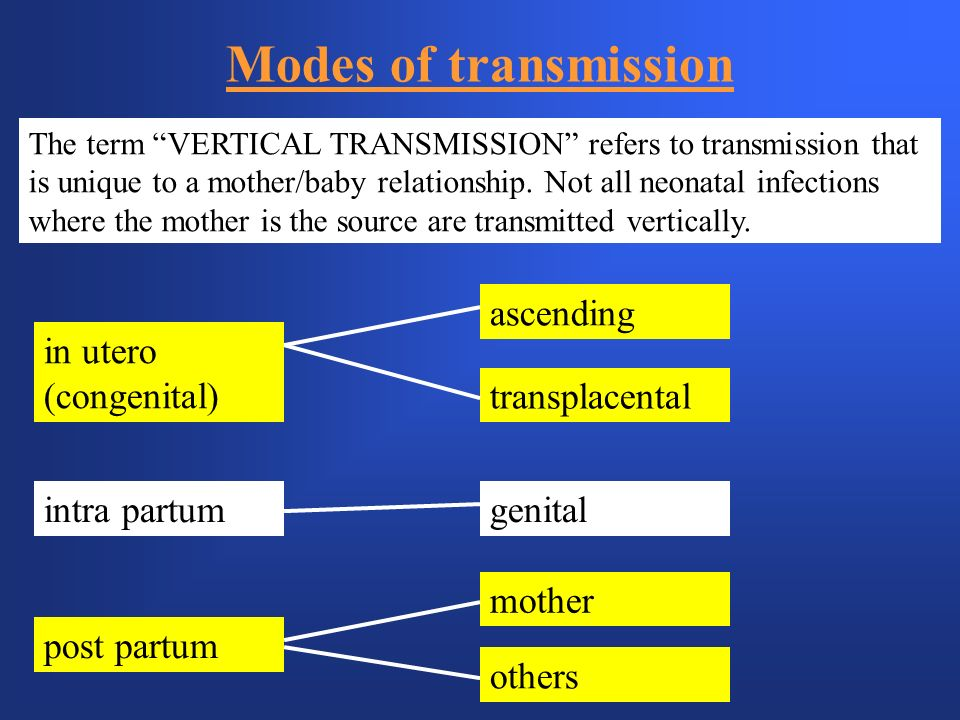 Modes of transmission ascending in utero (congenital) transplacental