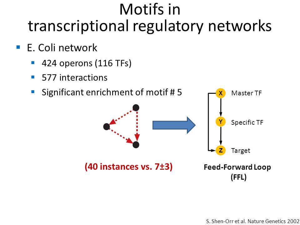 Feed-Forward Loop (FFL)