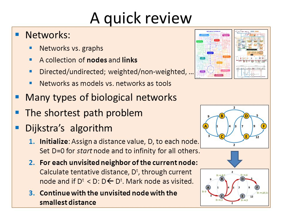 A quick review Networks: Many types of biological networks