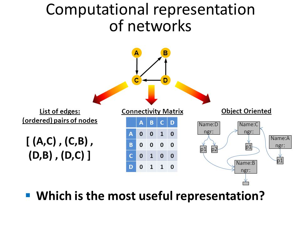Computational representation of networks