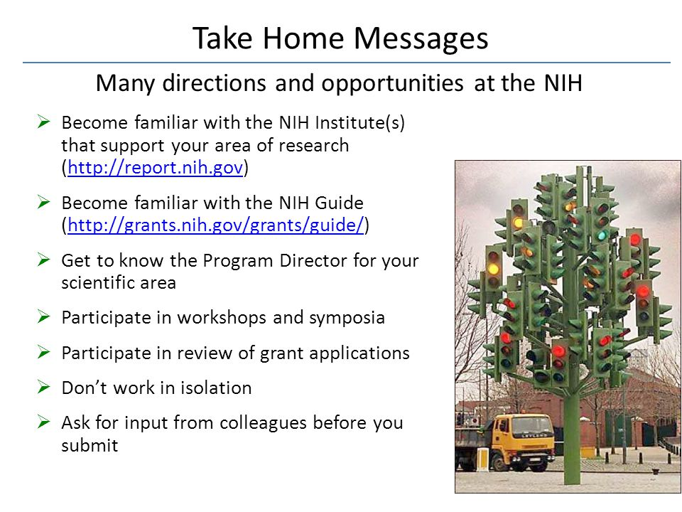 Many directions and opportunities at the NIH