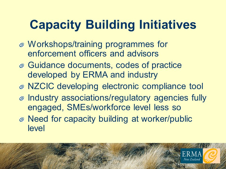 Capacity Building Initiatives