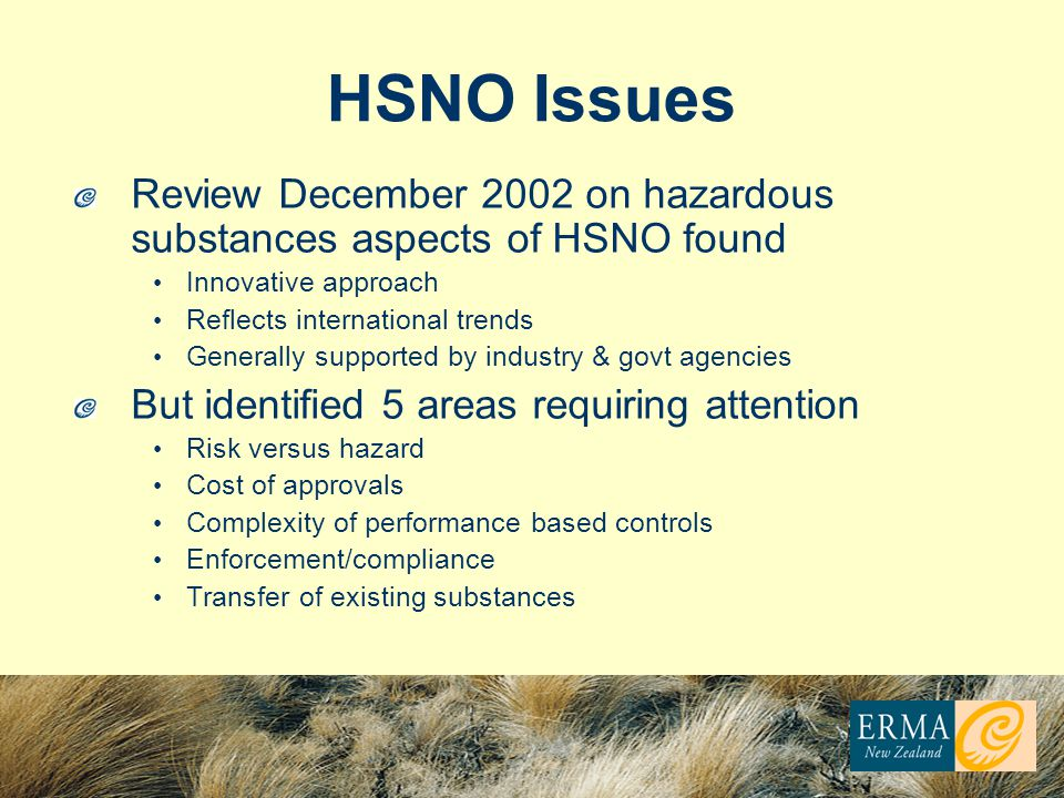 HSNO Issues Review December 2002 on hazardous substances aspects of HSNO found. Innovative approach.