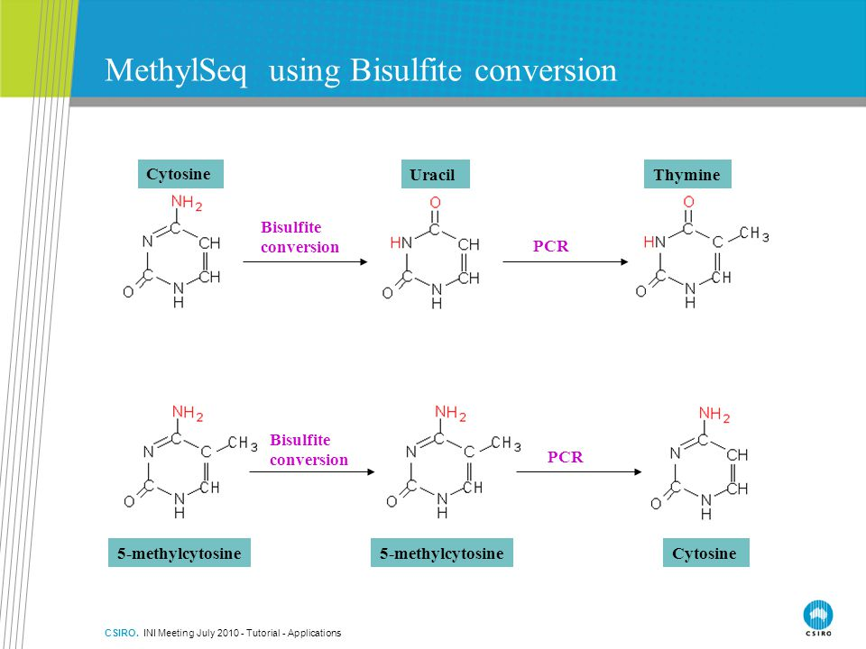 MethylSeq using Bisulfite conversion