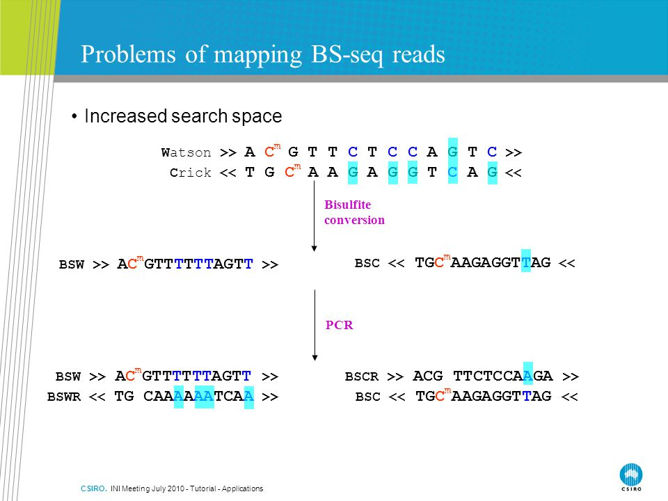 Problems of mapping BS-seq reads