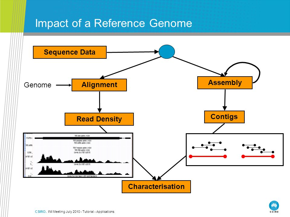 Impact of a Reference Genome