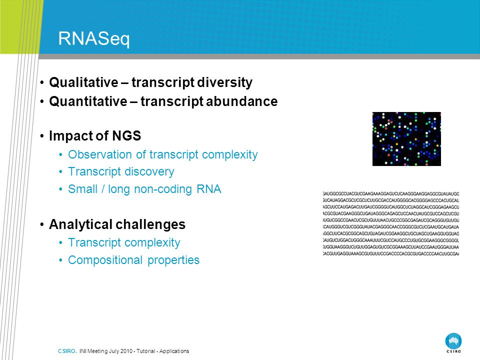 RNASeq Qualitative – transcript diversity