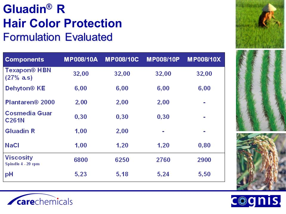 Gluadin® R Hair Color Protection Formulation Evaluated