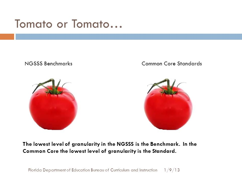Tomato or Tomato… NGSSS Benchmarks Common Core Standards
