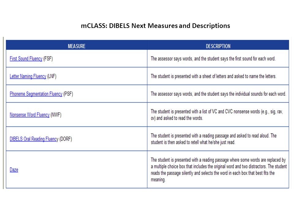 mCLASS: DIBELS Next Measures and Descriptions