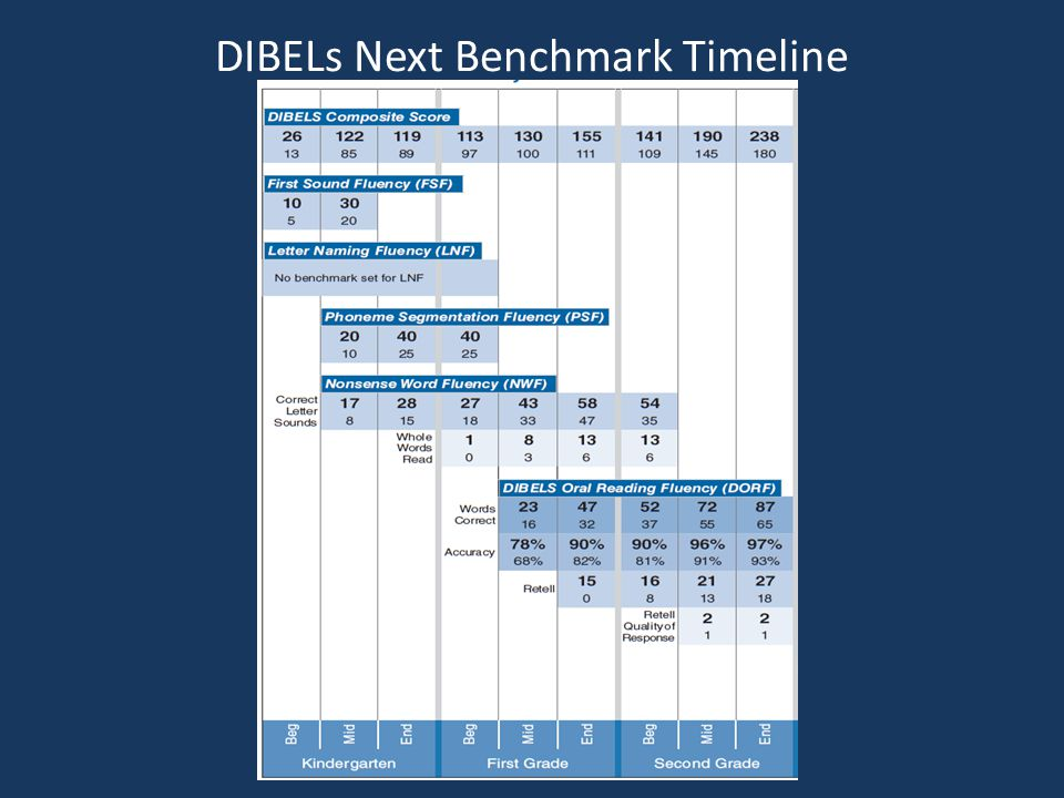 DIBELs Next Benchmark Timeline