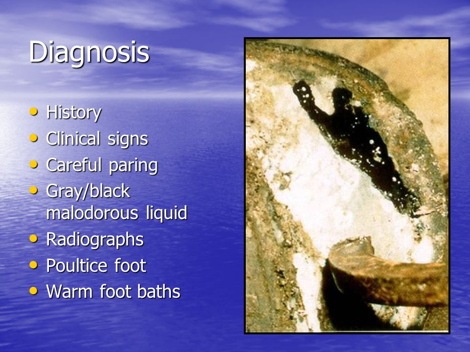 Diagnosis History Clinical signs Careful paring