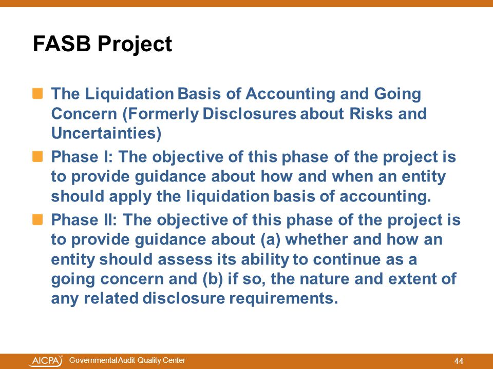 FASB Project The Liquidation Basis of Accounting and Going Concern (Formerly Disclosures about Risks and Uncertainties)