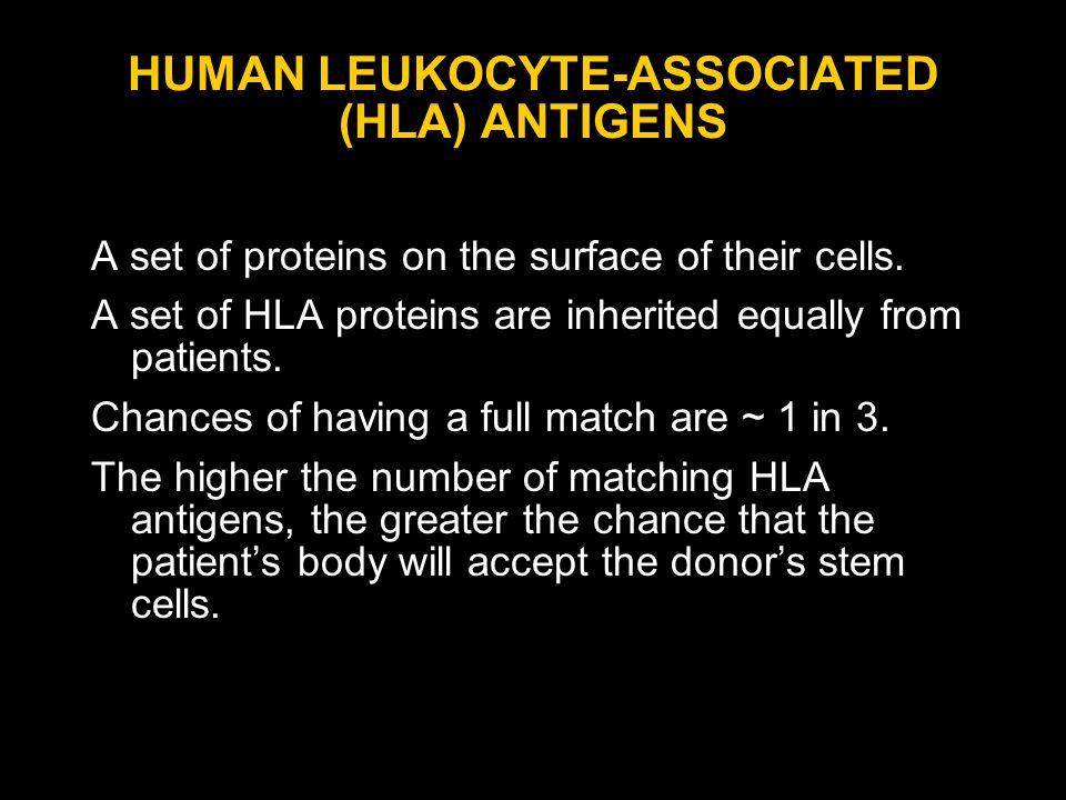 HUMAN LEUKOCYTE-ASSOCIATED (HLA) ANTIGENS