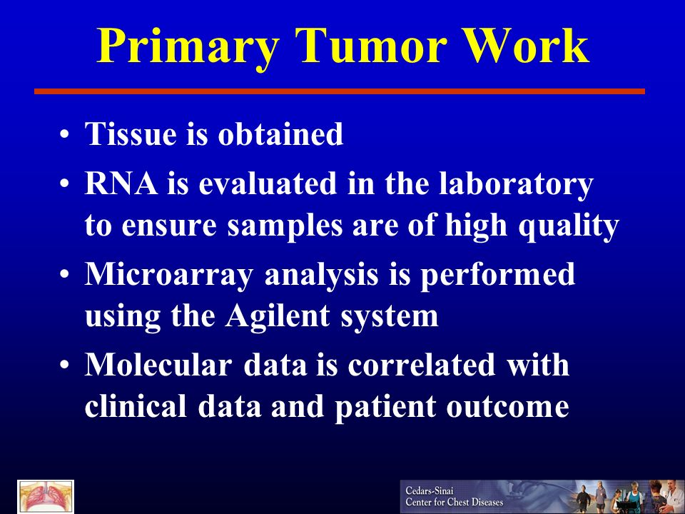 Primary Tumor Work Tissue is obtained