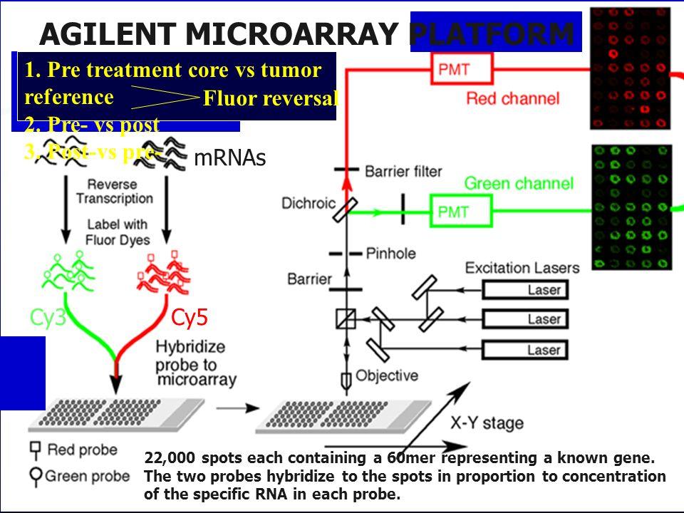 AGILENT MICROARRAY PLATFORM
