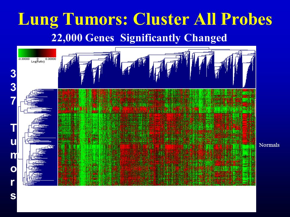 Lung Tumors: Cluster All Probes