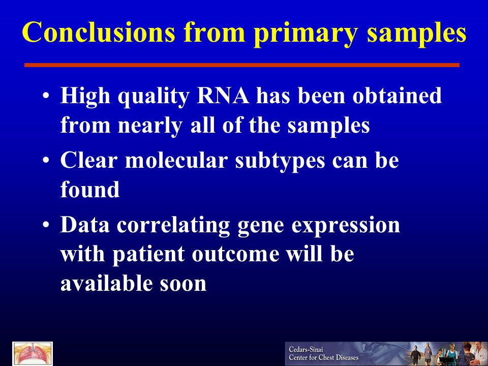 Conclusions from primary samples