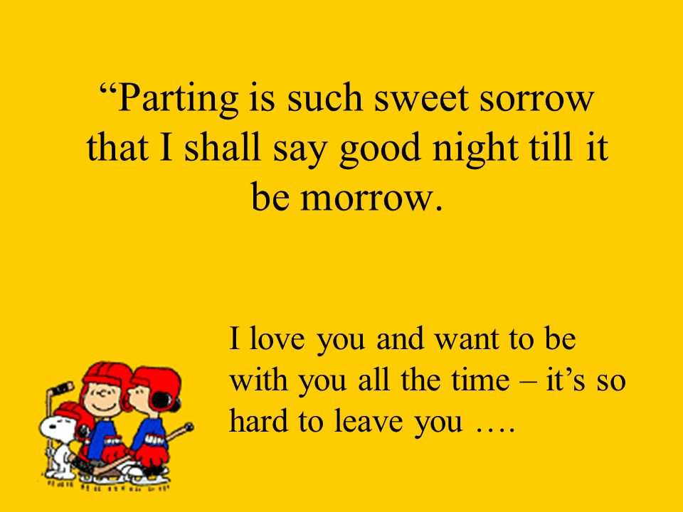 Parting is such sweet sorrow that I shall say good night till it be morrow.