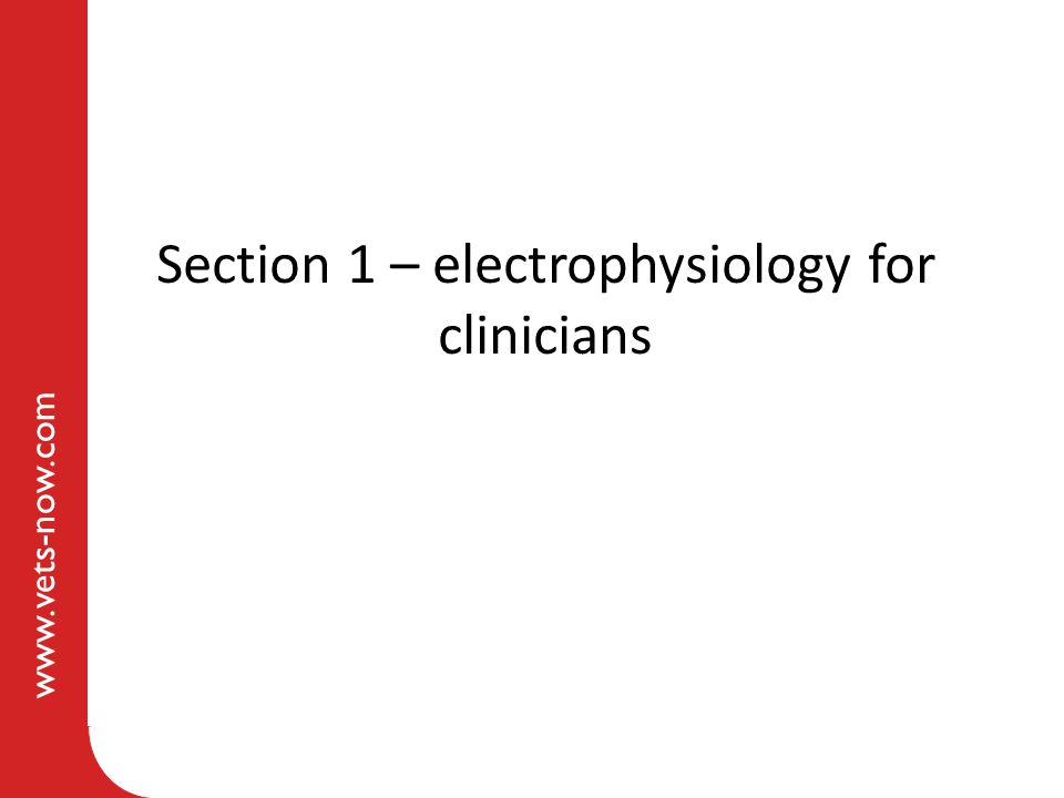 Section 1 – electrophysiology for clinicians