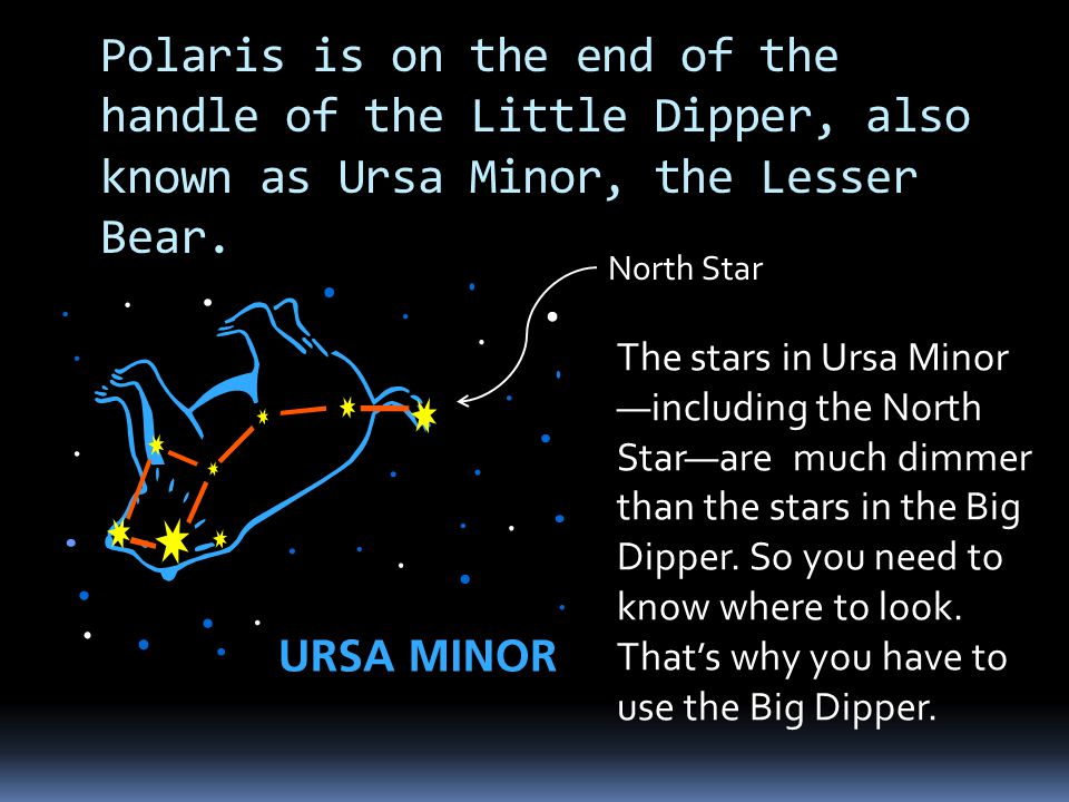 Polaris is on the end of the handle of the Little Dipper, also known as Ursa Minor, the Lesser Bear.