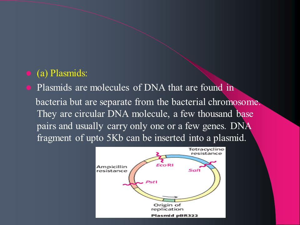 (a) Plasmids:Plasmids are molecules of DNA that are found in.