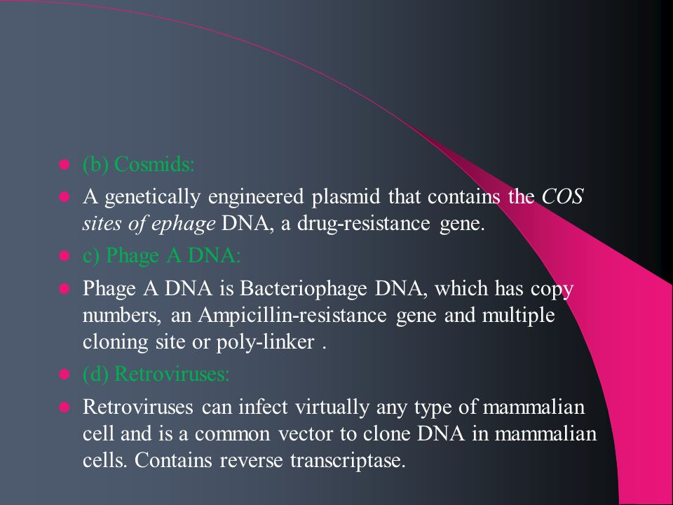 (b) Cosmids:A genetically engineered plasmid that contains the COS sites of ephage DNA, a drug-resistance gene.