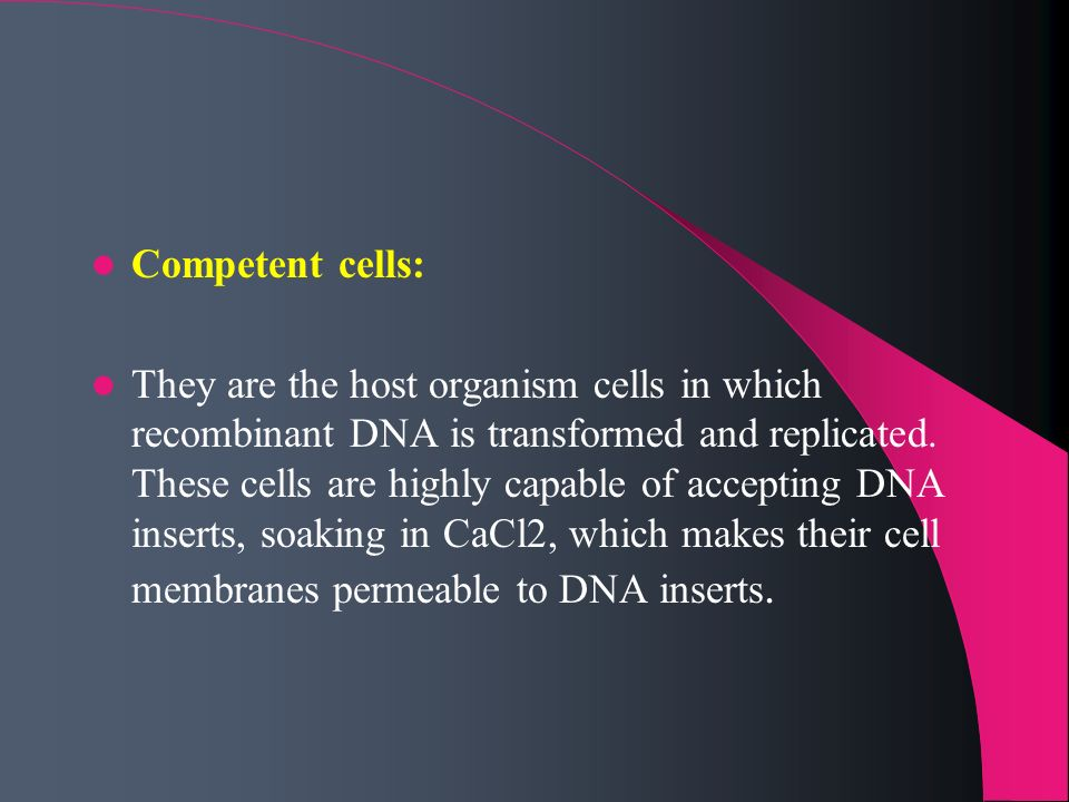 Competent cells: