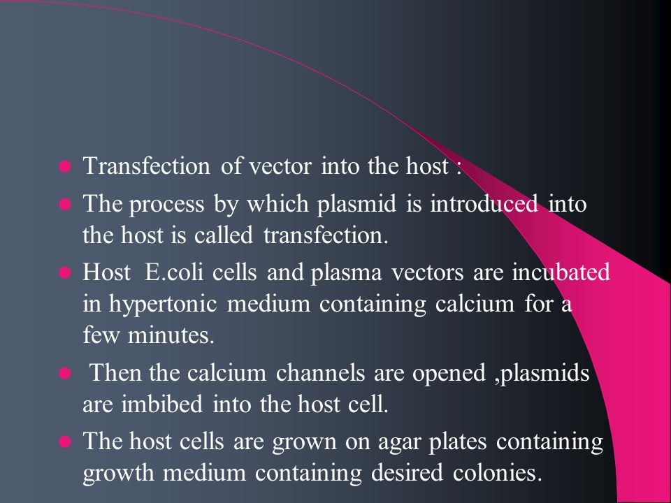 Transfection of vector into the host :