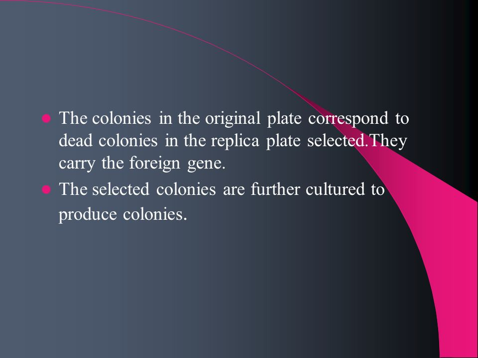 The colonies in the original plate correspond to dead colonies in the replica plate selected.They carry the foreign gene.