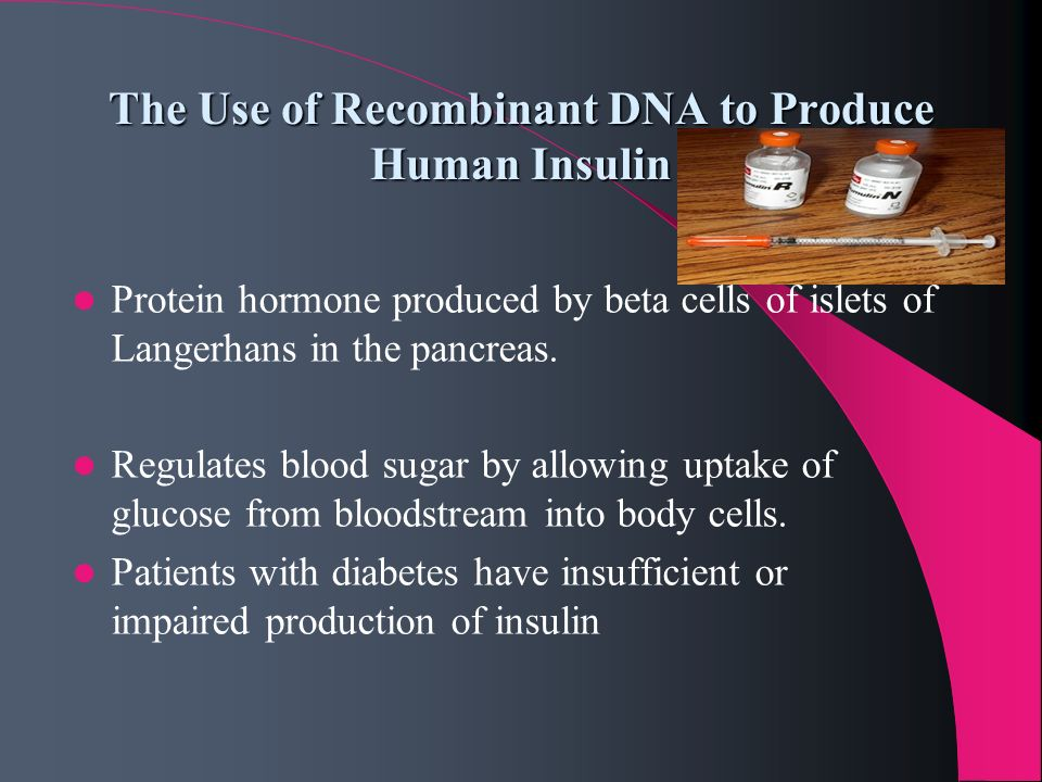 The Use of Recombinant DNA to Produce Human Insulin