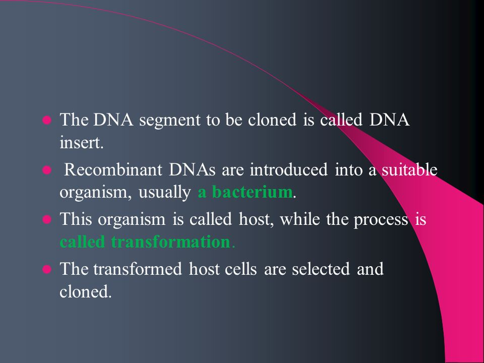 The DNA segment to be cloned is called DNA insert.