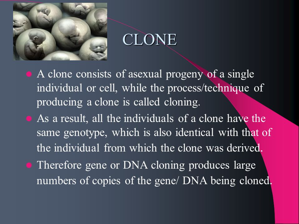 CLONE A clone consists of asexual progeny of a single individual or cell, while the process/technique of producing a clone is called cloning.