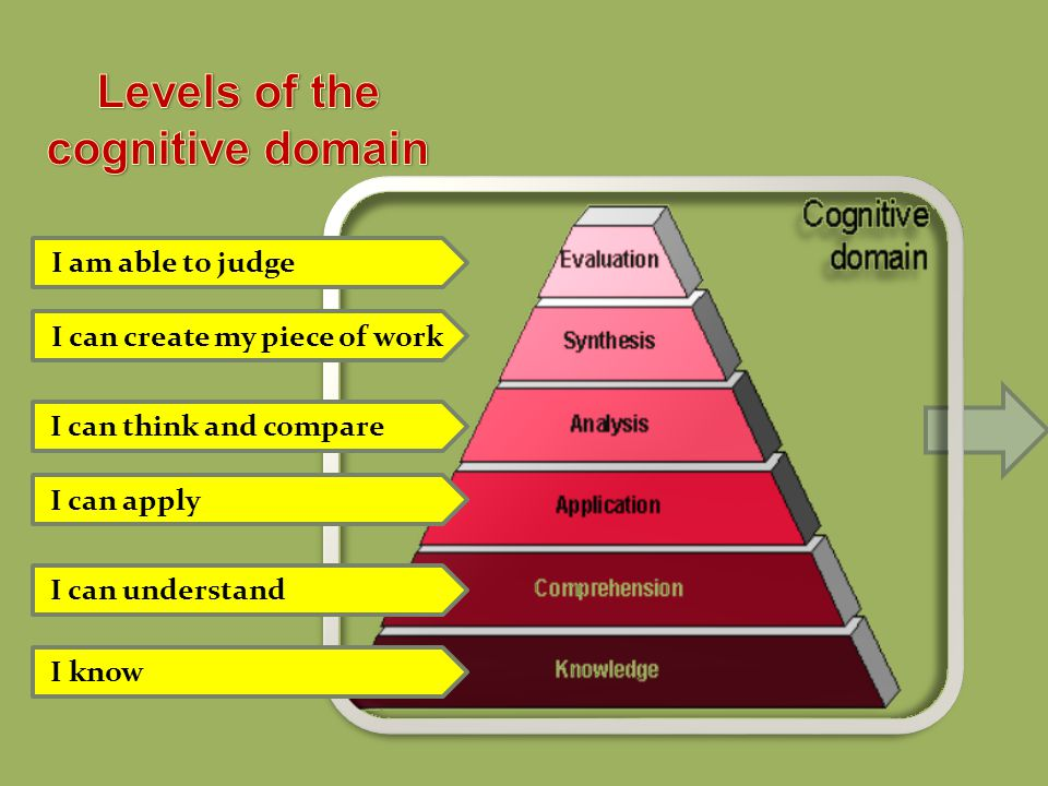 Levels of the cognitive domain