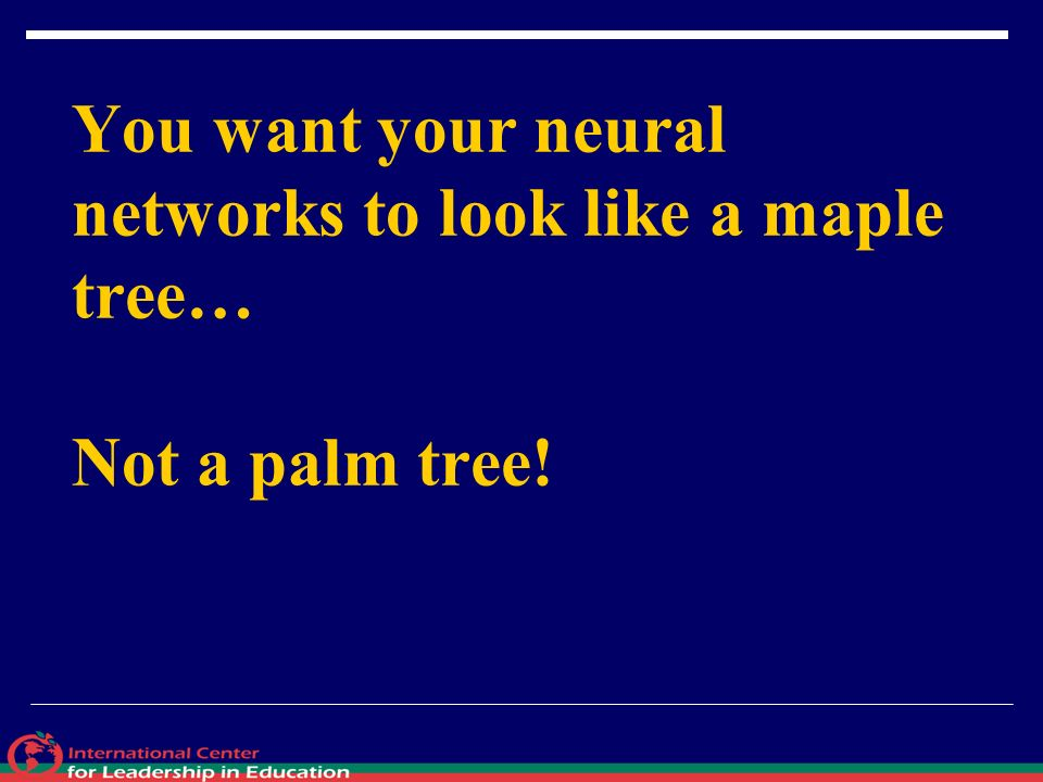 You want your neural networks to look like a maple tree… Not a palm tree!