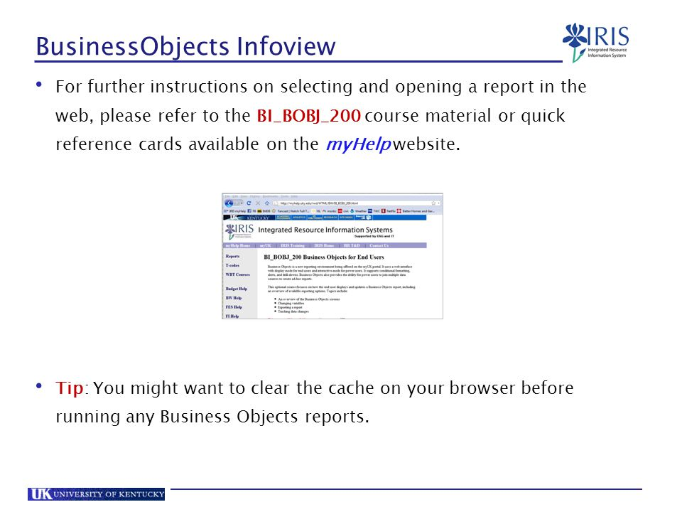 BusinessObjects Infoview