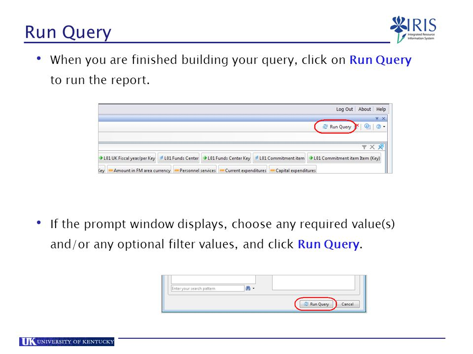 Run Query When you are finished building your query, click on Run Query to run the report.