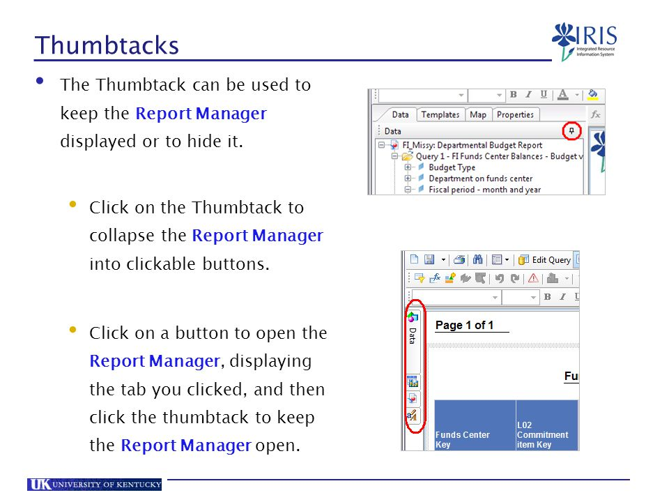 Thumbtacks The Thumbtack can be used to keep the Report Manager displayed or to hide it.