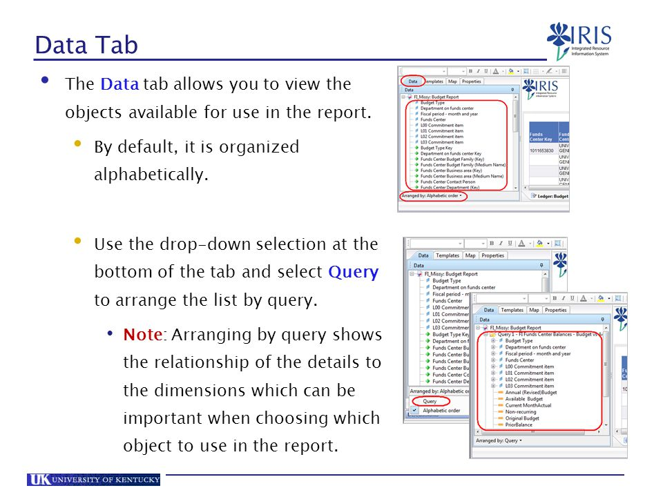 Data Tab The Data tab allows you to view the objects available for use in the report. By default, it is organized alphabetically.