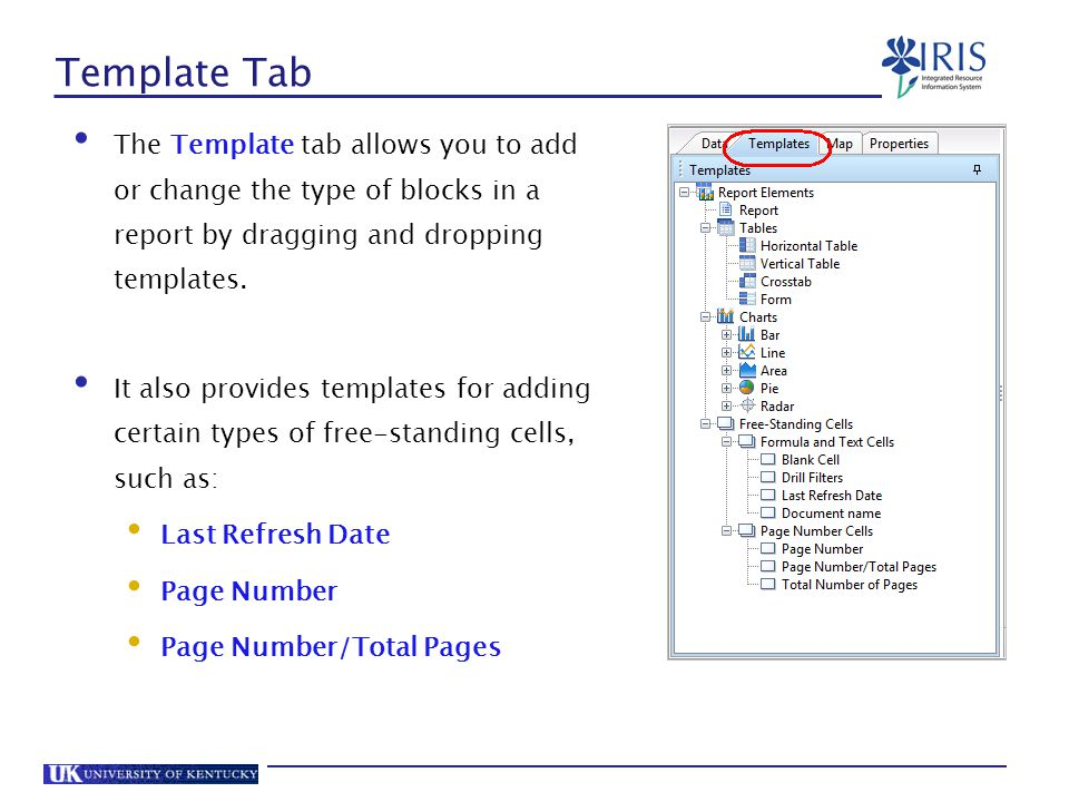 Template Tab The Template tab allows you to add or change the type of blocks in a report by dragging and dropping templates.