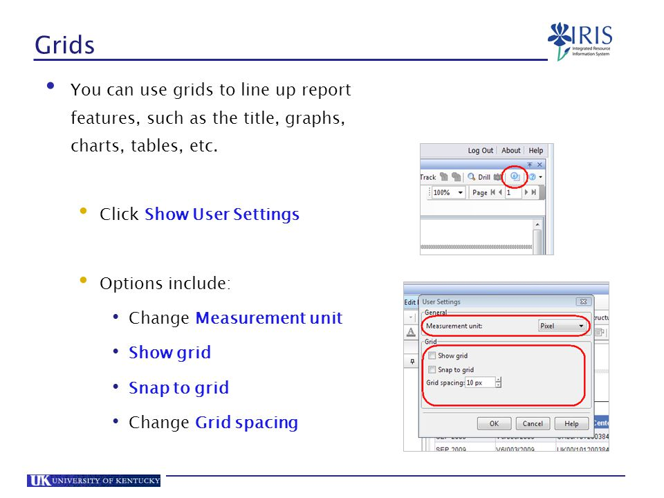 Grids You can use grids to line up report features, such as the title, graphs, charts, tables, etc.