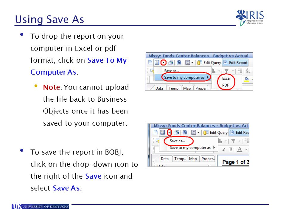 Using Save As To drop the report on your computer in Excel or pdf format, click on Save To My Computer As.
