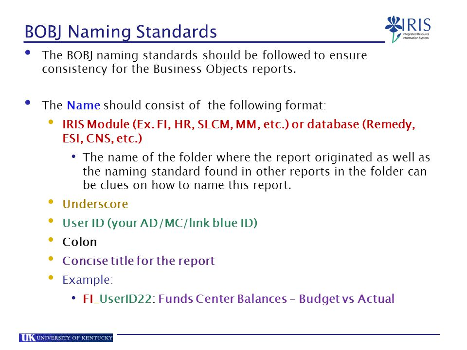 BOBJ Naming Standards The BOBJ naming standards should be followed to ensure consistency for the Business Objects reports.