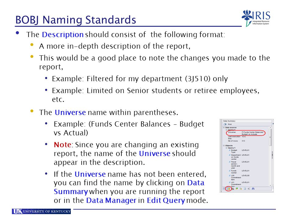 BOBJ Naming Standards The Description should consist of the following format: A more in-depth description of the report,