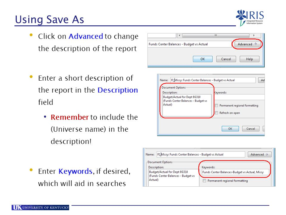 Using Save As Click on Advanced to change the description of the report. Enter a short description of the report in the Description field.