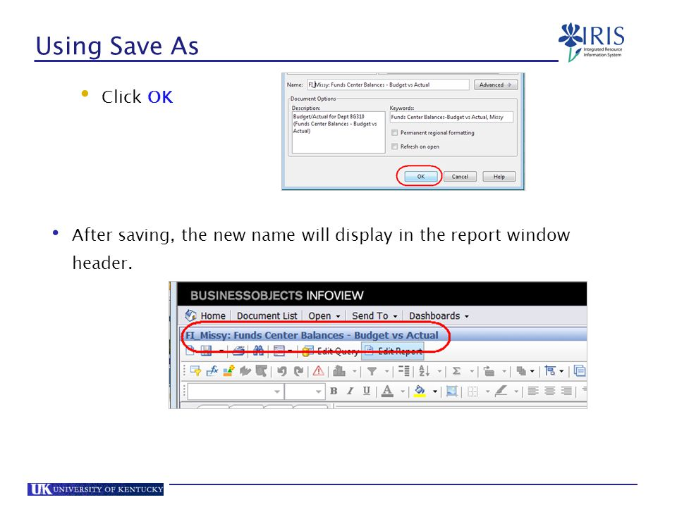 Using Save As Click OK After saving, the new name will display in the report window header.